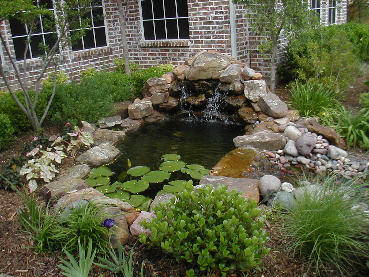 Xterieurdesign about us for Garden pond waterfall ideas